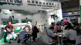 To review the Green Vine In China Glass 2019